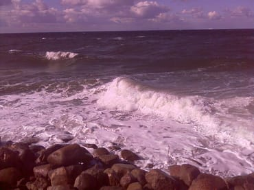 Herrliche, naturbelassene Ostsee