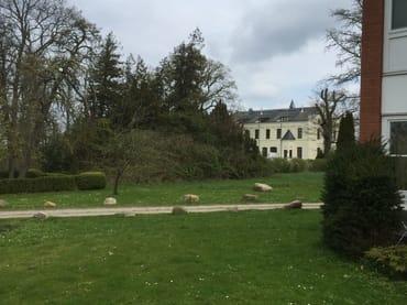 Der Gutspark mit GINKGO-Baum
