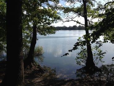 Grosser Krebssee in näherer Umgebung