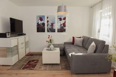 Blick in den Wohnbereich mit Couch und Flachbild-TV
