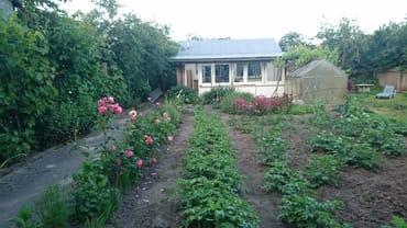 Ferienhaus im Garten mit Grillbereich
