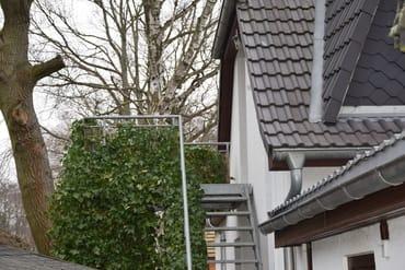 """""""Vogelnest""""-Einflugschneise mit Landeplatz :-)"""