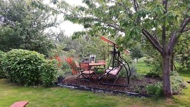 Naschgarten im hinteren Grundstücksbereich