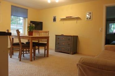 Wohnzimmer mit TV und Bücherregal