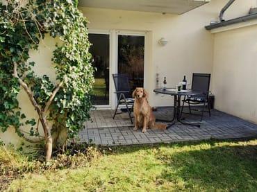 schöne Terrasse mit Garten