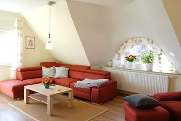 Wohnzimmer mit ausklappbarer Schlafcouch (130x200)
