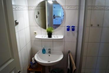 Gepflegtes Bad mit Dusche und WC