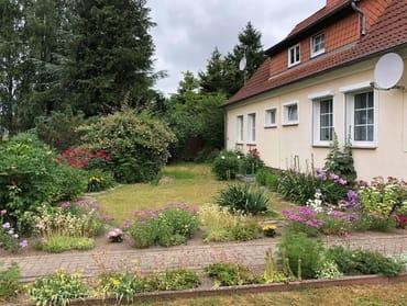 Seitlicher Blick zum vorderen Garten