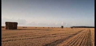 Der Sommer neigt sich dem Ende. Die Felder werden abgeerntet.