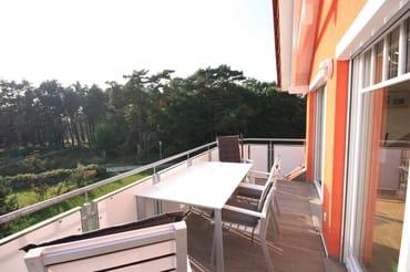 Dachterrasse mit Blick auf den Küstenwald