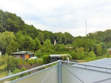 Balkonsicht Richtung Moorwald