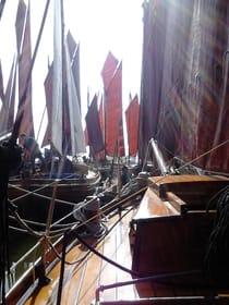 Zeesboote vor dem Strat zur Regatta - Braune Segel mit Tradition