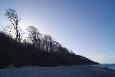 Der Gespensterwald im Winter