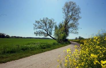 Reetzow ist der ideale Ausgangspunkt, um das schöne Hinterland zu erkunden