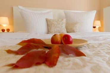 Gern können Sie unseren Service nutzen und ein Wäschepaket (Bettwäsche und Handtücher) kostenpflichtig hinzubuchen. In diesem Fall sind die Betten bei Anreise für Sie liebevoll bezogen.