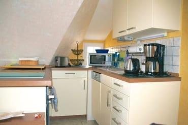 Küchenbereich mit Geschirrspüler, Kühlschrank, Induktionsherd mit  Backofen, Mikrowelle