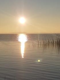 Sonnenaufgang Boddenseite