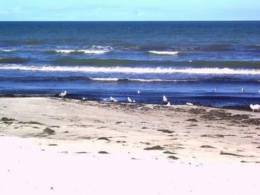 Glower Strand und die Ostsee