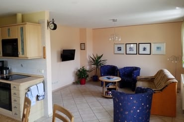 Wohnzimmer mit Küche mit direktem Terrassenzugang zur Südseite