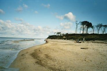 Der Weststrand auf dem Darß-von Arte zu den 10 schönsten Stränden der Welt gekürt!