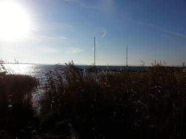 Yachthafen von Glowe