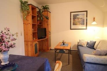 Wohn- und Schlafzimmer, die Couch ist mit wenigen Handgriffen zum Doppelbett (Breite 1,40m) umfunktioniert