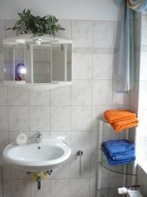 Blick ins Badezimmer (mit WC+Dusche)