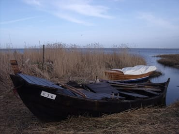 Am Saaler Bodden
