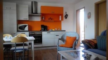 Wohnraum mit Schlafcouch, integrierter Küche -eingerichtet mit Mikrowelle, Backofen und Spülmaschine