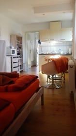kombiniertem Wohn- und Schlafraum mit Pantryküche (Kühlschrank, integriertem Gefrierfach, Zweiplattenherd und Mikrowelle)