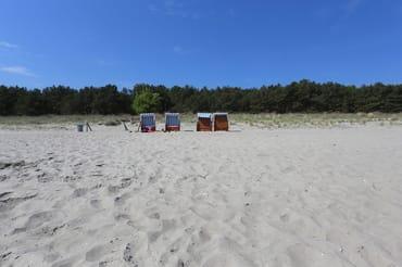 unsere 4 Strandkörbe
