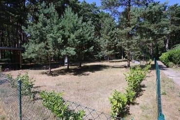 Ihr Garten, den Sie nur  mit der Dünenvilla  2 teilen