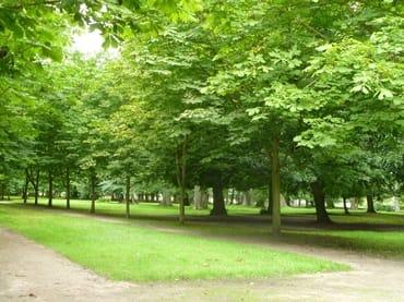 Im Kurpark Ostseebad Juliusruh