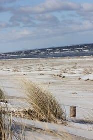 Der Strand im Winter.