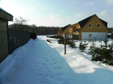 Winterfrieden