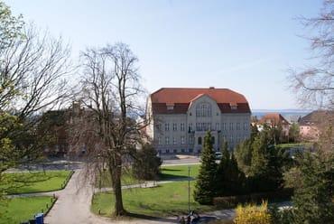 Blick aus dem Fenster, im Vordergrund das unter Denkschmalschutz stehende Rathaus