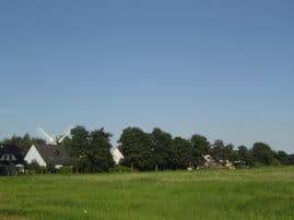 Unsere Ferienanlage liegt am Rande eines Naturschutzgebietes -  Sie schauen auf endlose Wiesen mit Störchen und Pferden - oder Drachen am Himmel !