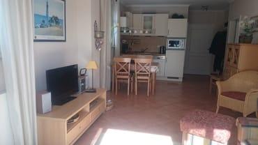 Wohnzimmer mit Flachbild-TV, gut ausgestatteter Küchenzeile und großzügigem Wohnbereich