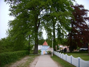 Von unserem Haus zur Ostsee