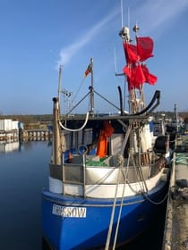 Im Hafen von Thiessow