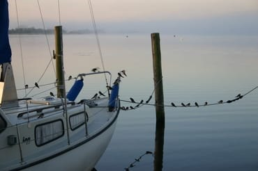 Am frühen Morgen am Selliner See