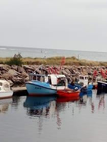 unsere 3 Fischerboote