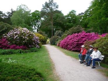Ein Blick in den Rhododendronpark in Graal-Müritz.