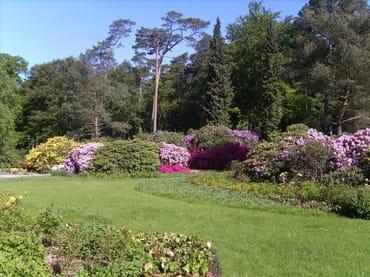 Rhododendronpark, 400 m vom Ferienhaus entfernt