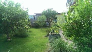 Blick vom Garten