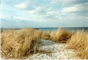 Der Strand in 300m Entfernung zu Ihrer Ferienwohnung lädt zum Baden ein. Ein eigener Parkplatz ist für Sie reserviert.