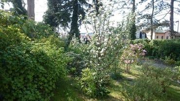 Garten vor der Sitzecke
