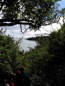 Blick vom Kap Arkona