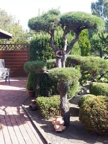Terrasse Lee mit Blick in den Garten