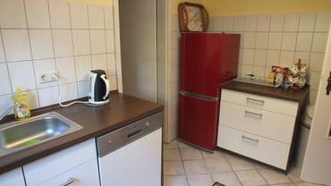 kleine Küche mit Geschirrspüler